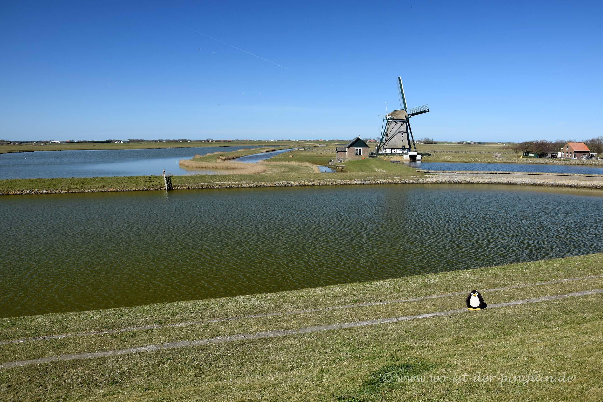 Vor einer Windmühle auf Texel