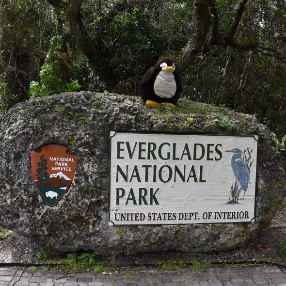 Everglades-Nationalpark