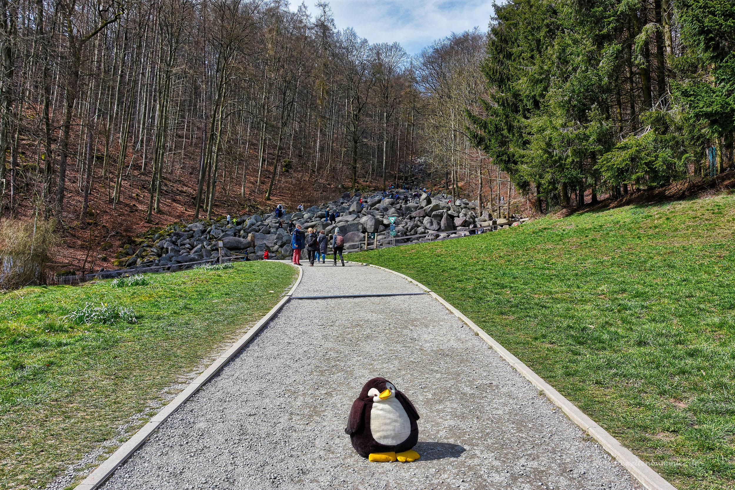Felsenmeer im Odenwald