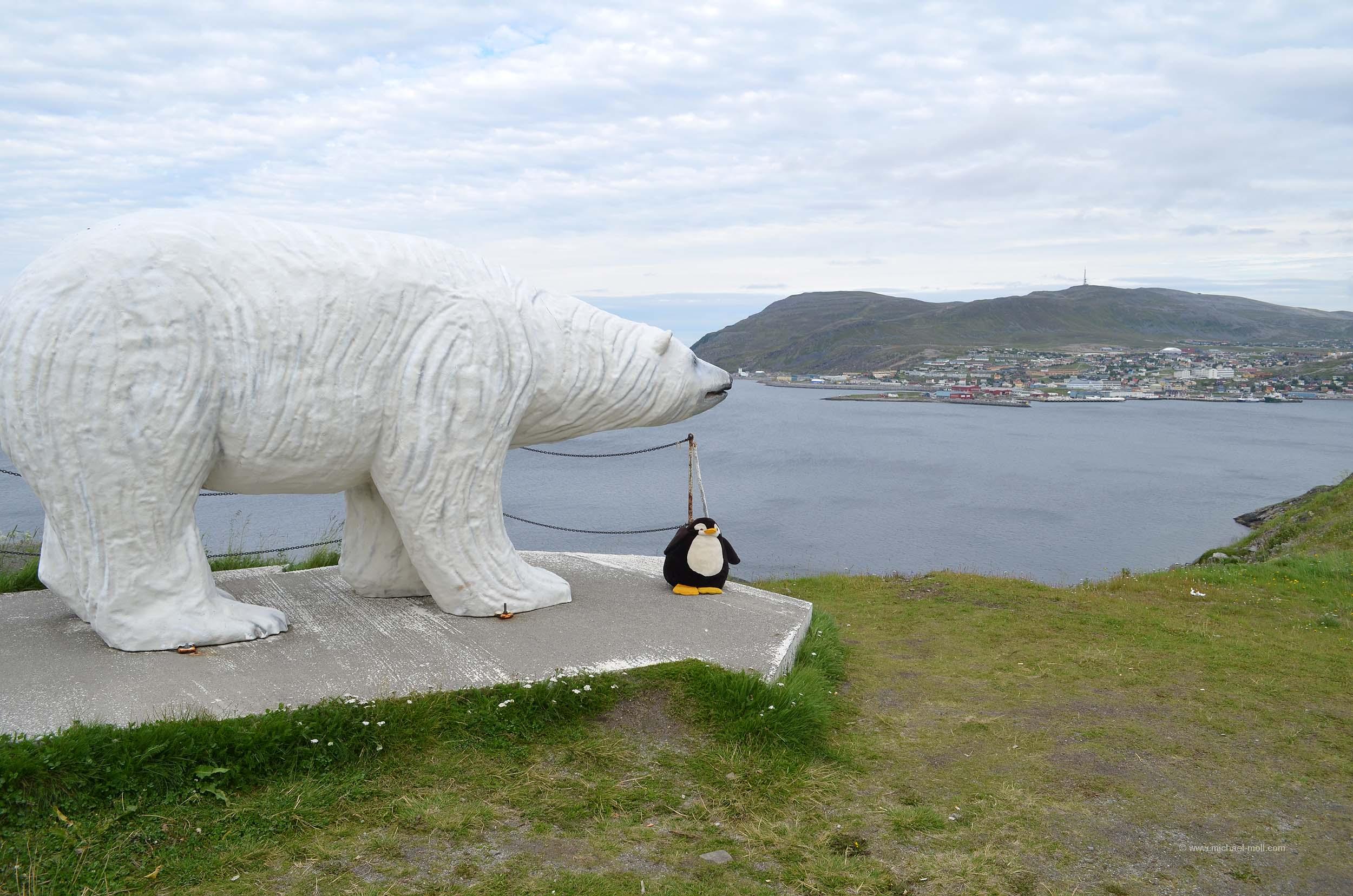 Eisbär in Hammerfest