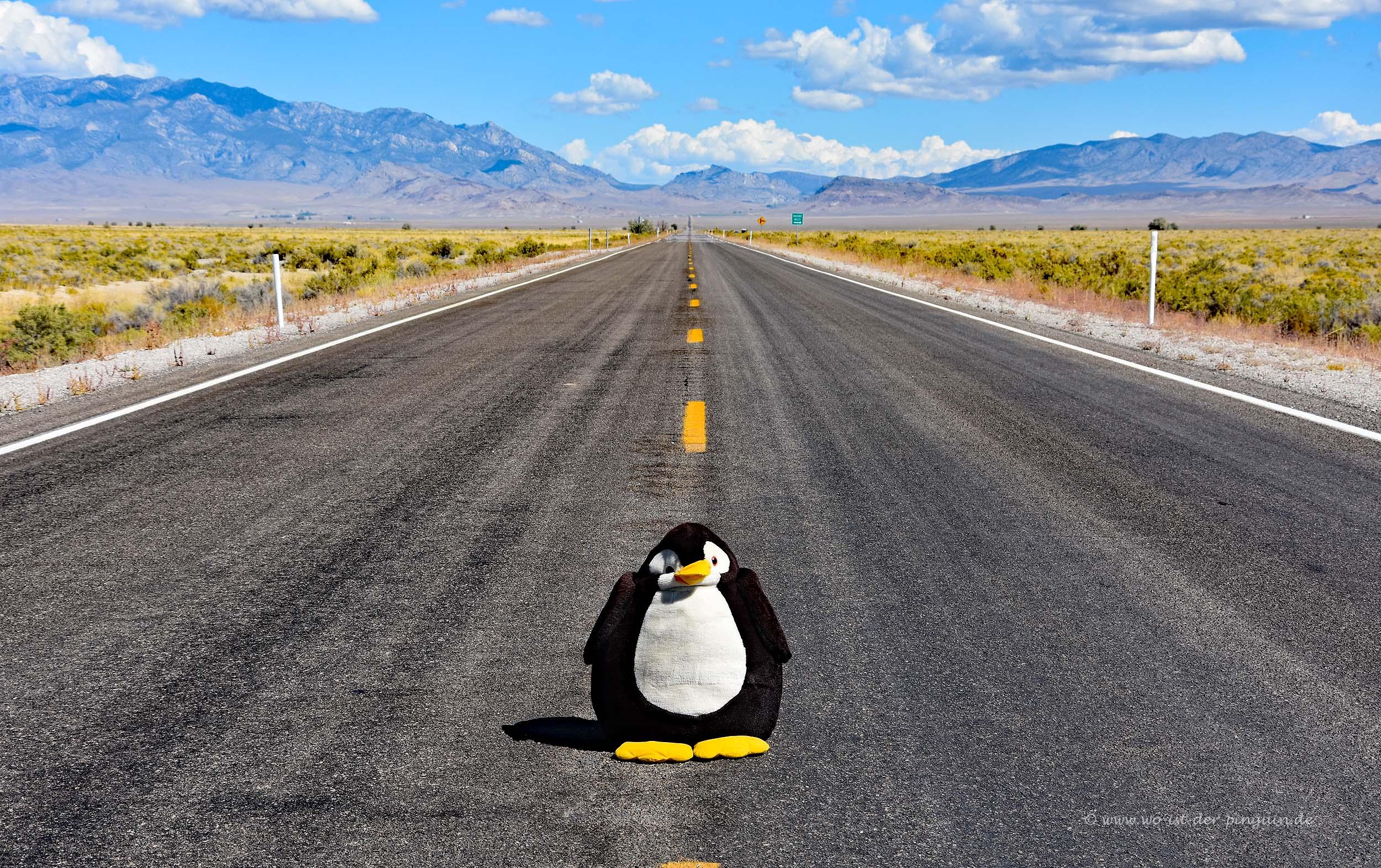 Highway 6 in Nevada
