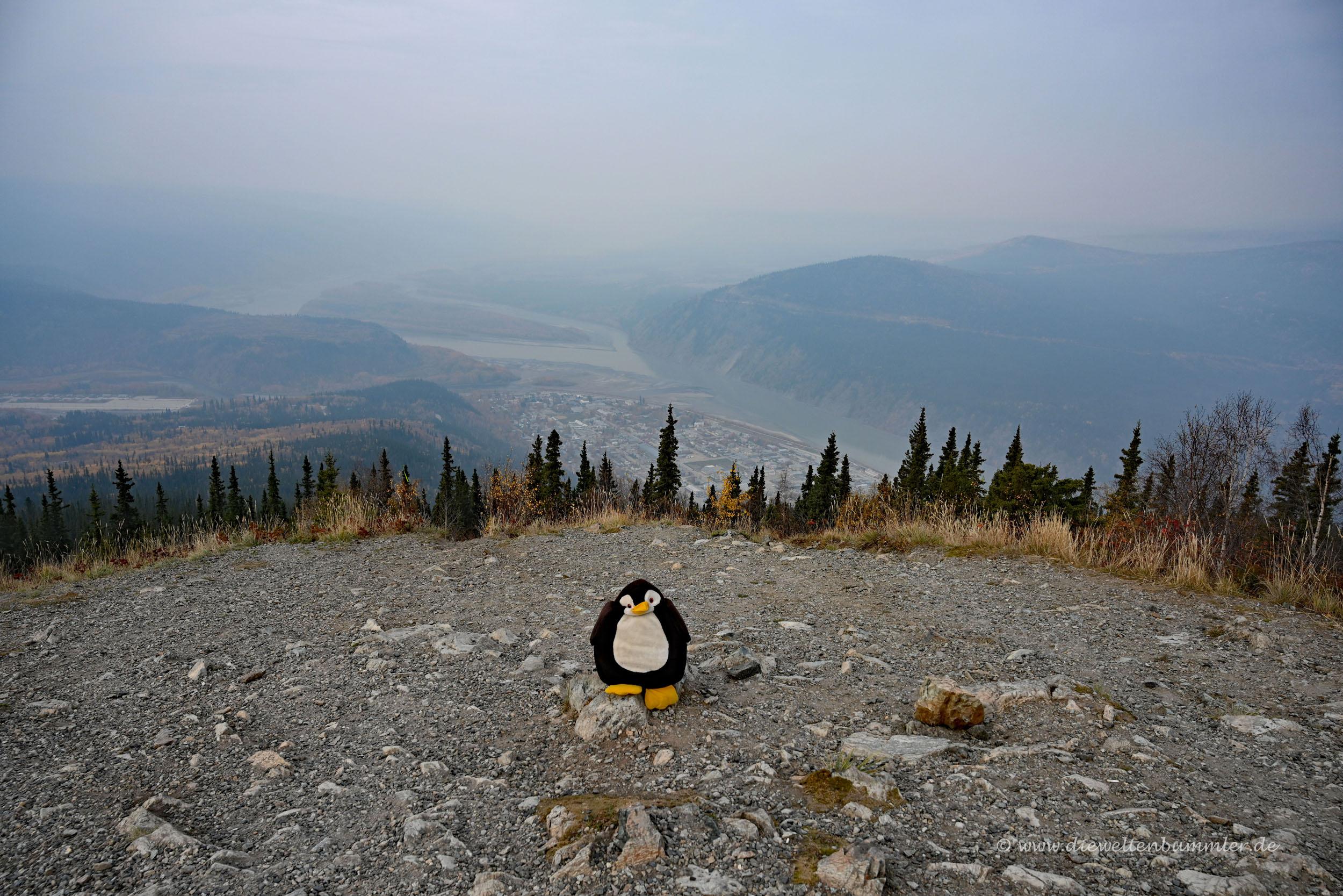 Ausblick auf Dawson City