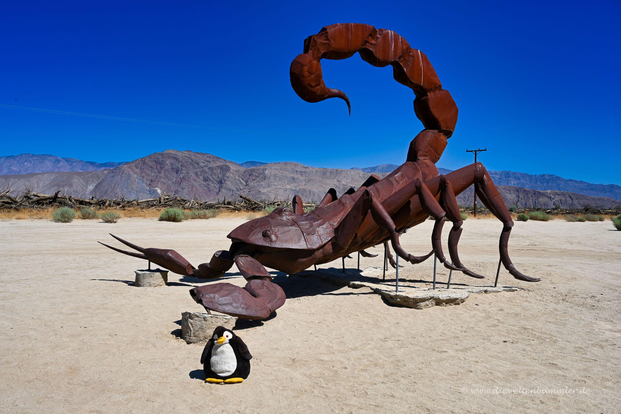 Skorpion in Borrego Springs